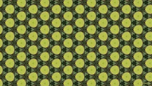 Dark and light green swamp pattern wallpaper