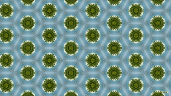 Light blue green pattern wallpaper