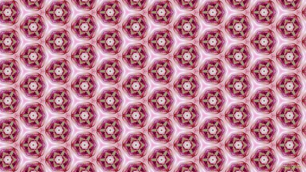 Pink pattern wallpaper with hexagons with flowers