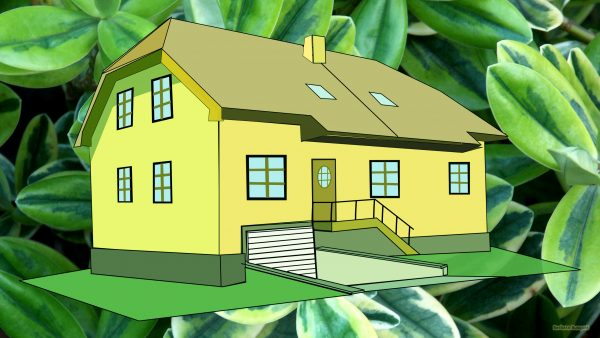 3d house and green leaves