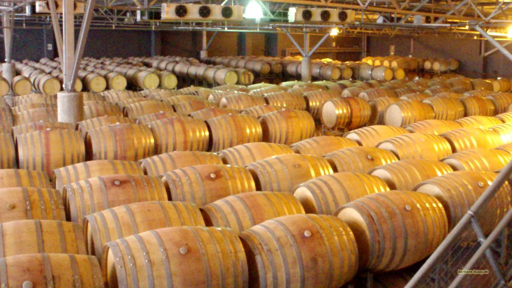 Wine barrels in South Africa.