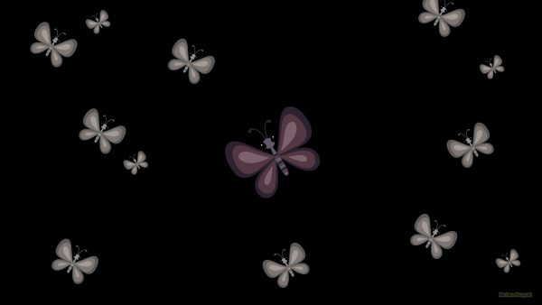 Black pattern wallpaper with butterflies