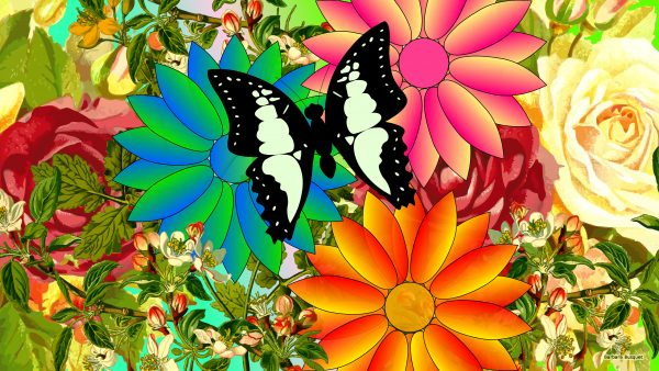 Spring wallpaper butterflies and flowers