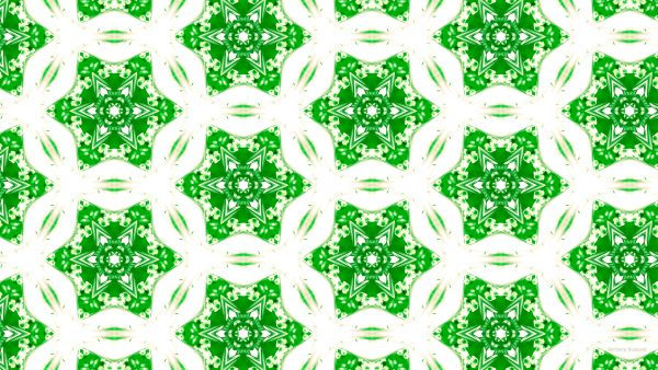 Green white pattern wallpaper with stars and flowers