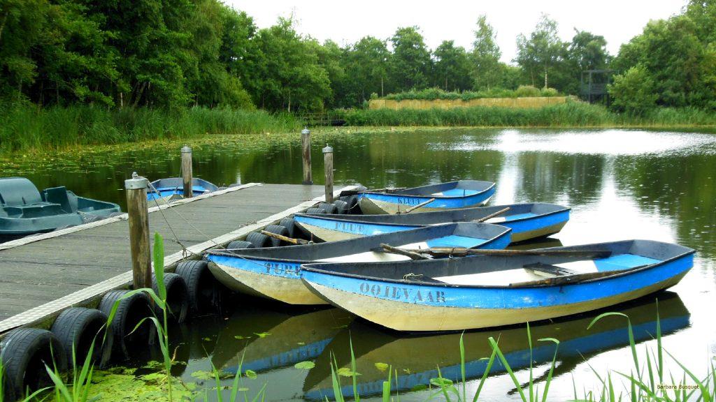HD wallpaper lake with boats