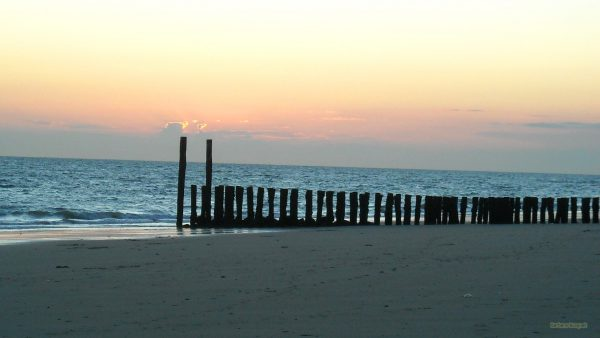 Beach with wooden poles to protect the coast