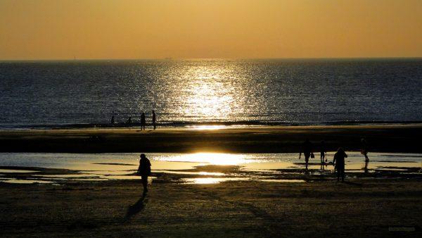 HD wallpaper People at beach at sunset