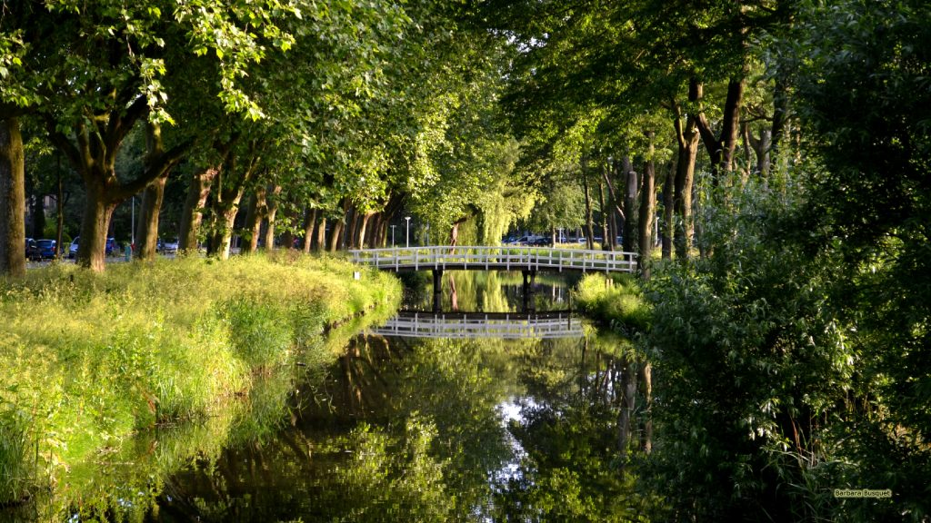 HD wallpaper canal and wooden bridge