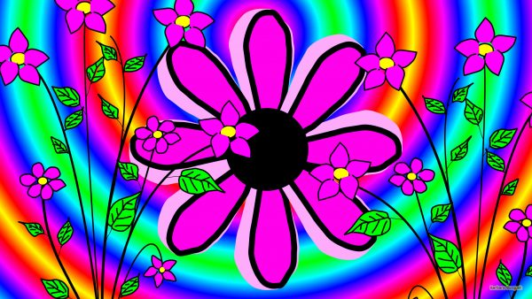 Rainbow colors and pink flowers