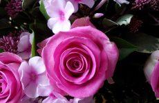 Summer bouquet pink roses