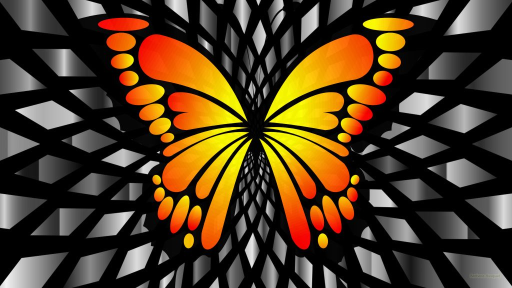 Gray wallpaper orange butterfly