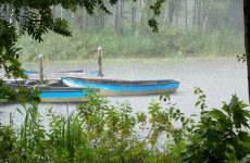 Rowing boats in the rain