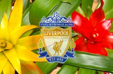 Liverpool Football Club Wallpapers