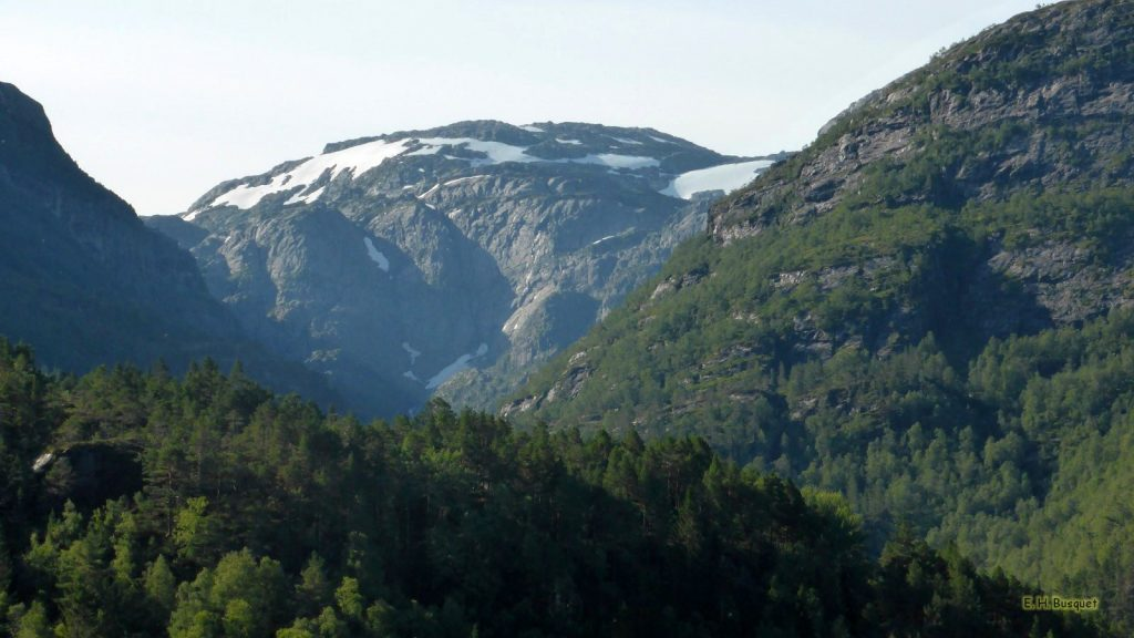 Norway wallpaper mountains and forest