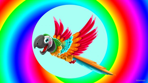 Colorful HD wallpaper with a parrot.