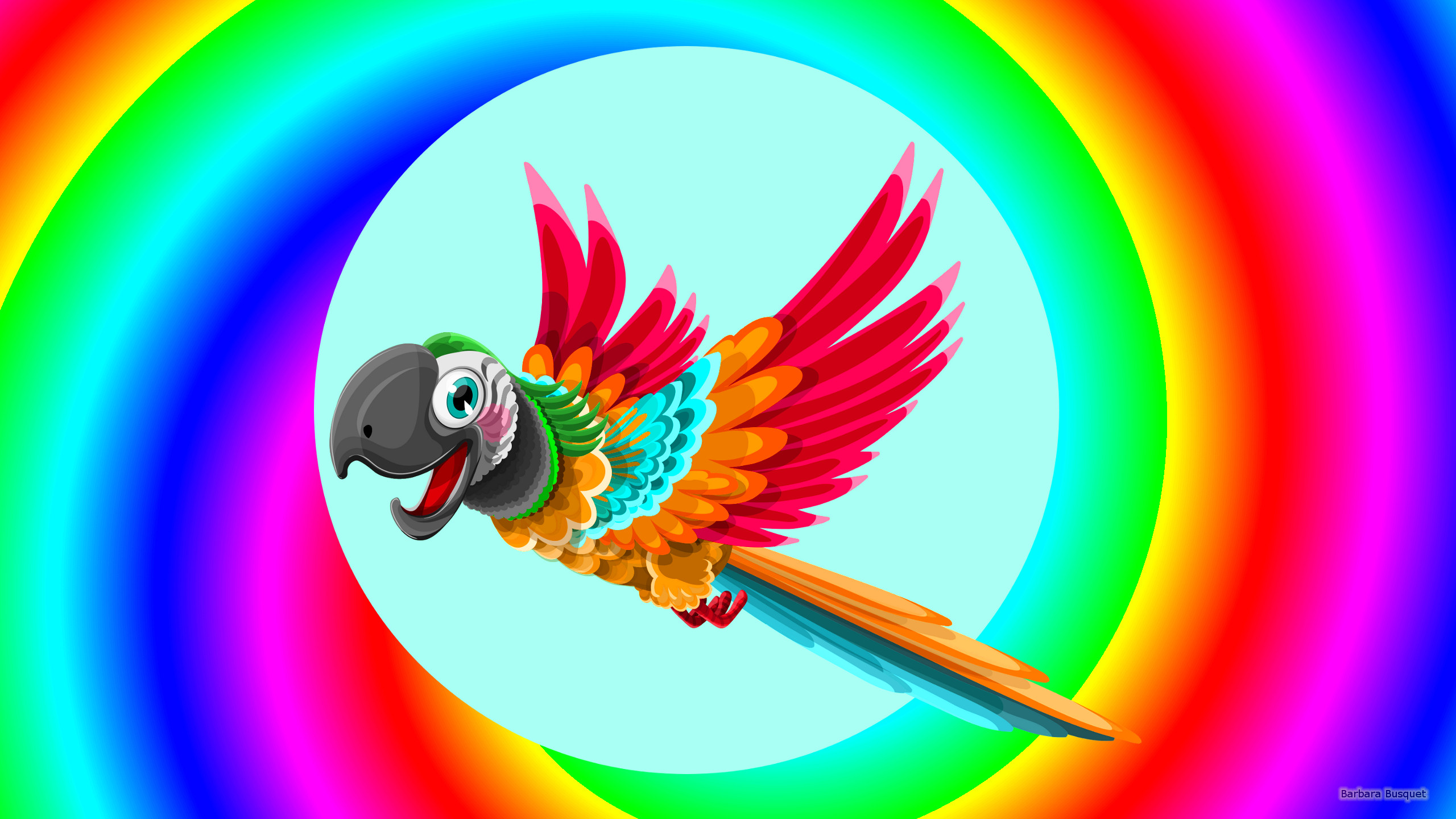 colorful wallpaper with parrot - barbaras hd wallpapers