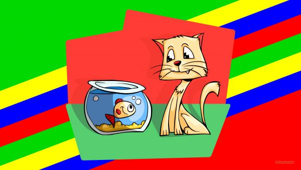 HD wallpaper with a cat looking at a fish in a bowl.