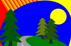 Road and pine trees wallpaper