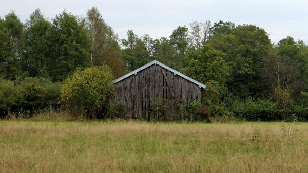 HD wallpaper with a shed in early autumn.