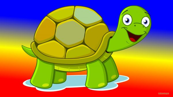 HD wallpaper with a green turtle on a background in blue, red and yellow colors.