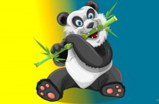 Giant panda with bamboo