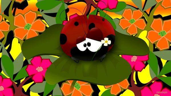 Spring wallpaper flowers and ladybug