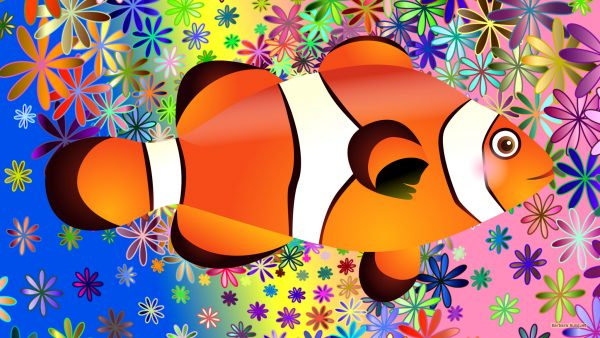 Colorful HD wallpaper orange white clownfish