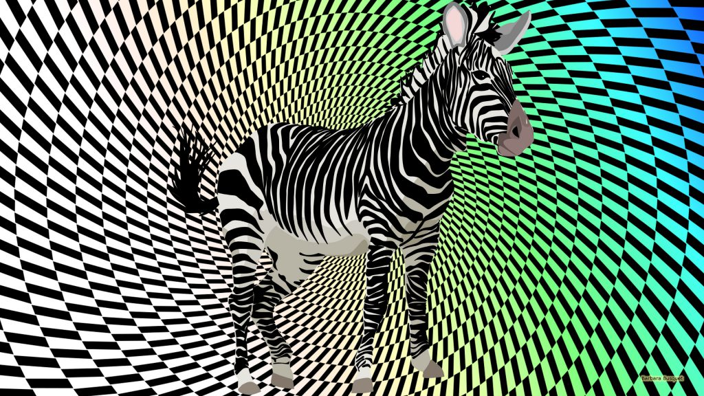 Black white wallpaper with a zebra.