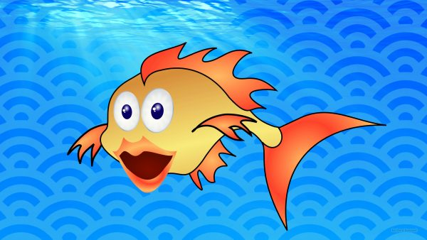 HD wallpaper goldfish in the water