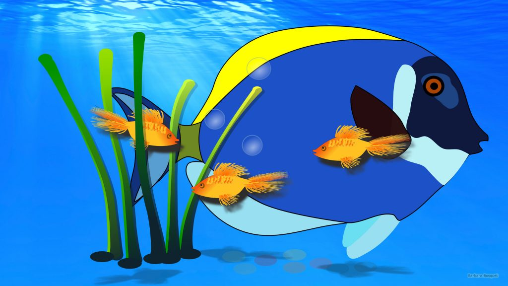 HD wallpaper water with fish and giant fish