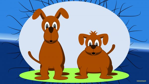 HD wallpaper two brown dogs