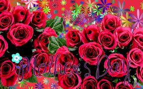 Mothersday wallpaper with roses