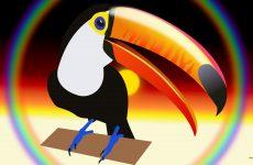 Toucan and rainbow