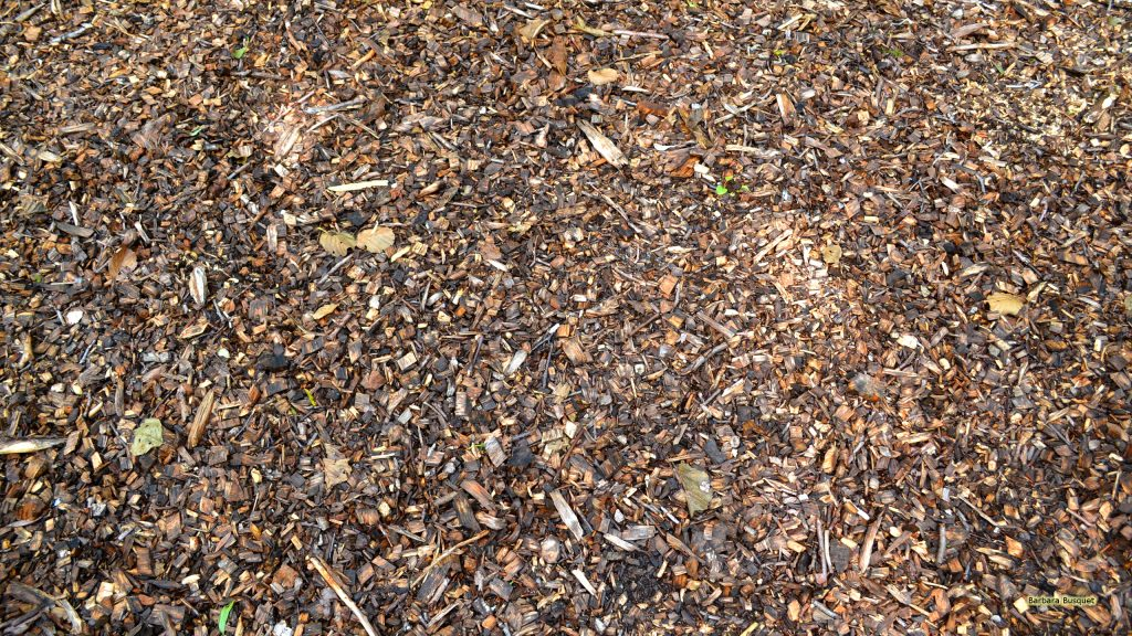 HD wallpaper Woodchips