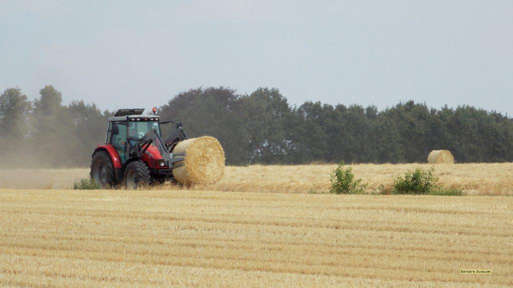 HD wallpaper tractor making hay bales