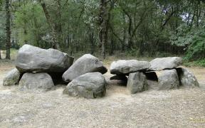 Dolmens in the Netherlands wallpaper