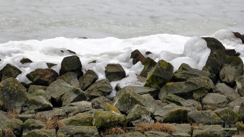 HD wallpaper shoreline ice pileup in The Netherlands