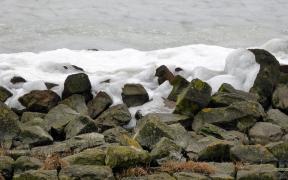 HD wallpaper shoreline ice pileup in The Netherlands